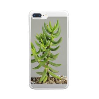 多肉植物B Clear smartphone cases