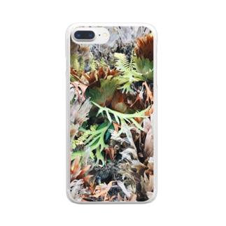 エキゾチック植物 Clear smartphone cases
