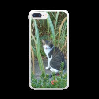 キシエリカの修羅の道を行く猫 Clear smartphone cases