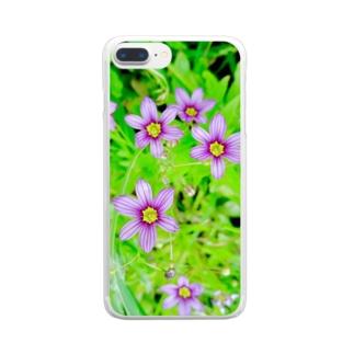 道端の花 ニワゼキショウ Clear smartphone cases