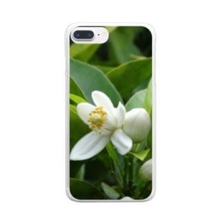 日本の花:ミカンの花 Japanese flowers: Mikan (Orange) Clear smartphone cases