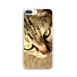 キャットオンザストリート Clear smartphone cases