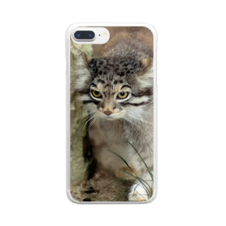 otocolobus manulのマヌルネコ Clear smartphone cases