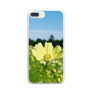黄色いコスモス Clear smartphone cases