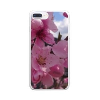 さくら Clear smartphone cases