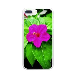 白粉花(オシロイバナ) Clear smartphone cases