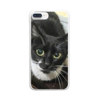 美桜 Clear smartphone cases