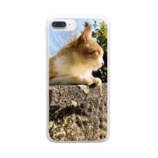 ねこ。ネコ。猫。のらねこさん。 Clear smartphone cases