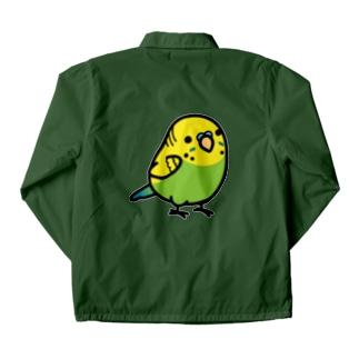 Chubby Bird セキセイインコ グリーン 男の子 コーチジャケット