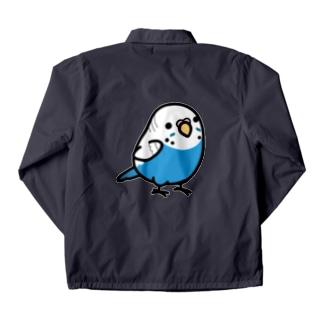 Chubby Bird セキセイインコ ブルー 女の子 コーチジャケット