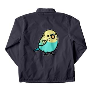Chubby Bird セキセイインコ レインボー 男の子 コーチジャケット