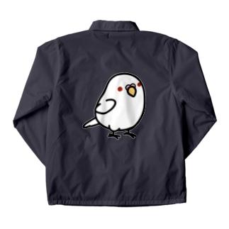 Chubby Bird セキセイインコ アルビノ コーチジャケット