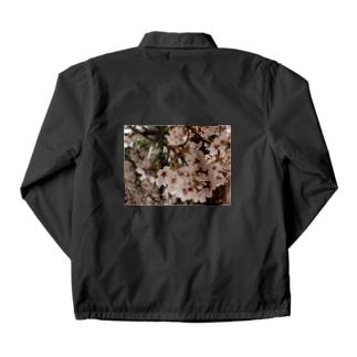 桜 サクラ cherry blossom DATA_P_152 春 spring Coach Jacket
