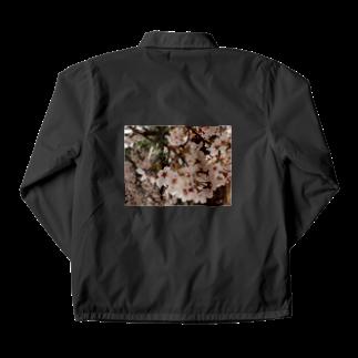 hiroki-naraの桜 サクラ cherry blossom DATA_P_152 春 spring Coach Jacket
