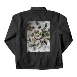 柿の葉 Coach Jacket
