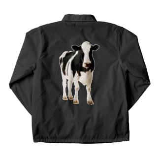 STYC MILK COW Coach Jacket