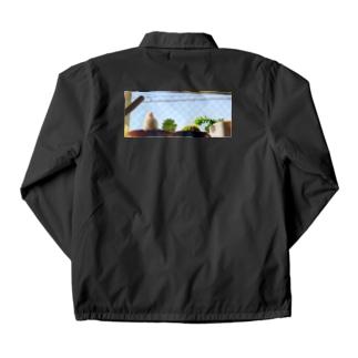 白文鳥のチマフミ Coach Jacket