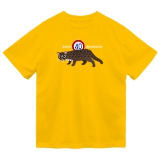 KEEP40 IRIOMOTE Dry T-Shirt