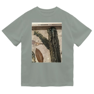 枯葉 Dry T-Shirt