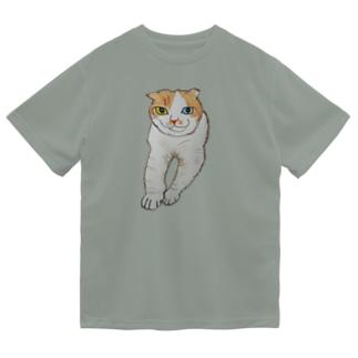 新之助(ロビン)829 Dry T-Shirt