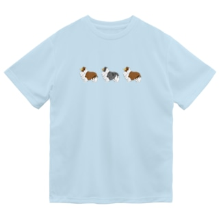シェルティー  セーブル✖︎2 マール Dry T-Shirt