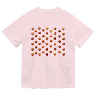 Honey toast set Dry T-Shirt