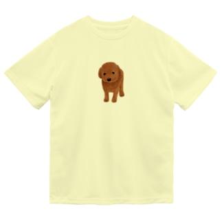 てんとう虫とわんこ Dry T-Shirt