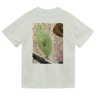 てんとう虫 Dry T-Shirt