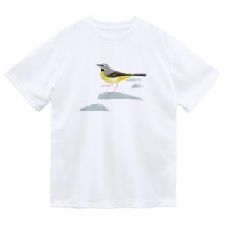 キセキレイ Dry T-shirts