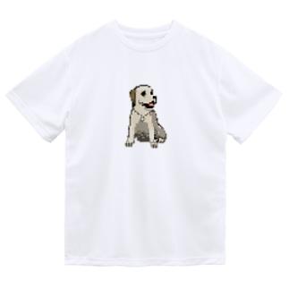 ピクセルなジュディ Dry T-Shirt