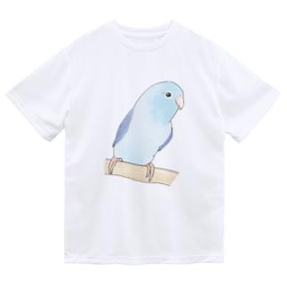 おしゃまなマメルリハのるりちゃん【まめるりはことり】 Dry T-shirts