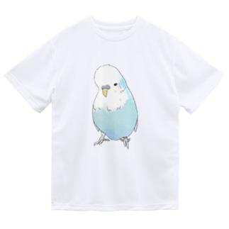 可愛いジャンボセキセイインコ【まめるりはことり】 Dry T-shirts