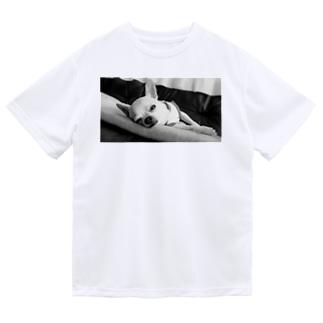 モノクロチワワ(アンニュイ2) Dry T-Shirt