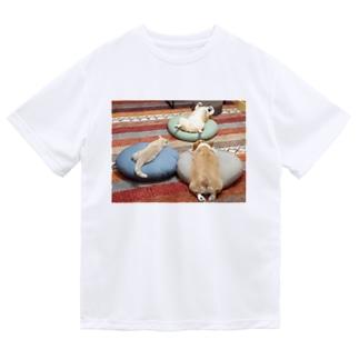 ちい むう ととろ Chi Mu Totoroのあやしい儀式をする犬と猫 Dry T-Shirt