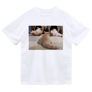 ちい むう ととろ Chi Mu Totoroのヘソ天占い Dry T-Shirt
