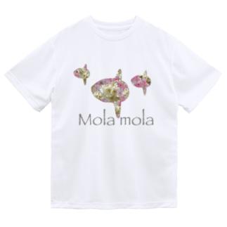 まんぼう Dry T-shirts