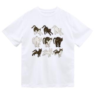 のび猫いっぱい色々 サビ猫キジ白猫白猫 Dry T-shirts