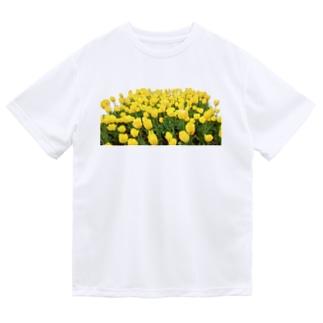 きいろい ちうりっぷ ドライTシャツ