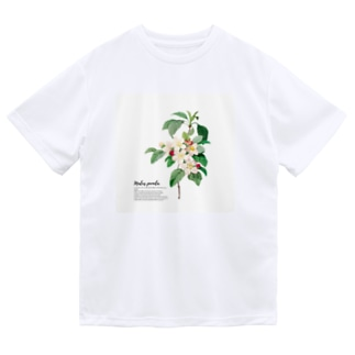 りんごのはな Dry T-shirts