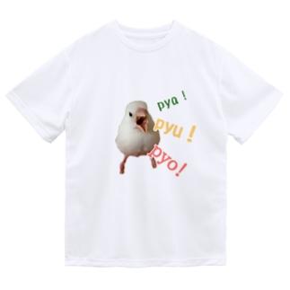 XL文鳥 たまちゃん ぐせり ドライTシャツ