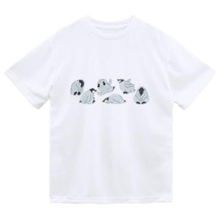 マツザキユキのエンペラーヒナちゃんコロンと! Dry T-Shirt