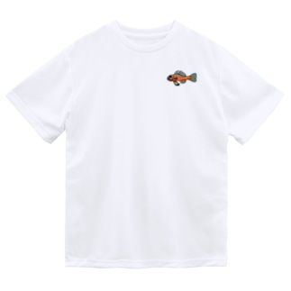 snaggedgorillaのオキナワベニハゼ Dry T-shirts