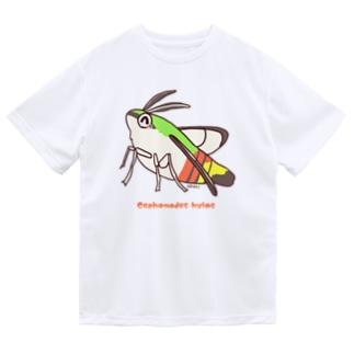 オオスカシバくん【むしのなかま】 ドライTシャツ