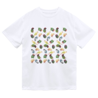 まめるりはことりのたっぷりウロコインコちゃん【まめるりはことり】 Dry T-Shirt