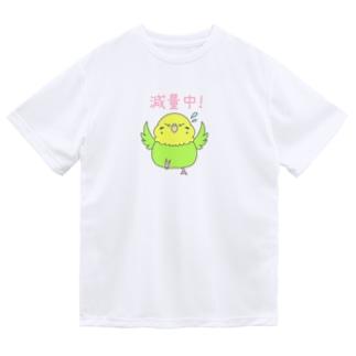 減量中のセキセイインコちゃん(黄緑) Dry T-Shirt