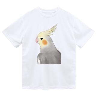 見つめるオカメインコちゃん【まめるりはことり】 Dry T-shirts