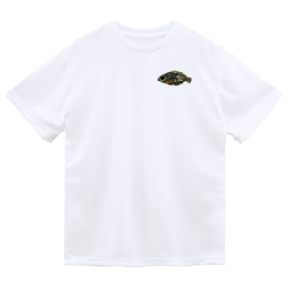 snaggedgorillaのホホワキュウセン Dry T-Shirt