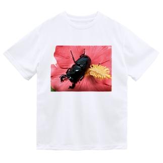 クワガタ ☆タランドゥス☆3 Dry T-Shirt