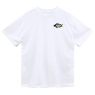 シンジュタマガシラ Dry T-Shirt