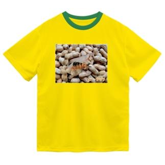 【A】ピーナッツ・小粒 ドライTシャツ